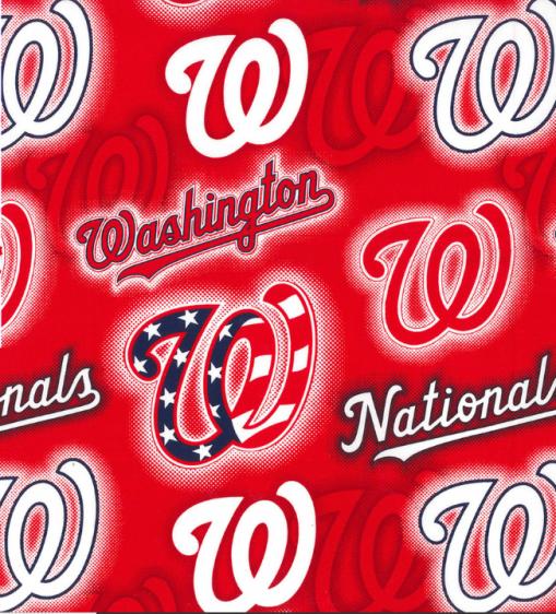 washington nationals mask